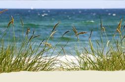 Der Ostsee - Strand